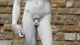 michelangelo David penis and hand this is cabaret com