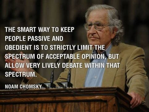 Noam Chomsky on social freedom pinterest com