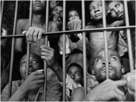 black men behind bars forum davidicke com