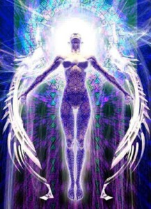 bodies divine