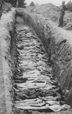 Holocaust open grave American soldiers stand guard along the perimeter of an open mass grave at Mauthausen pinterest com