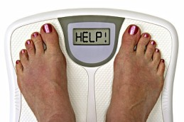 scales help ifasters com